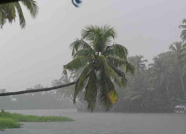 wayanad-monsoon3